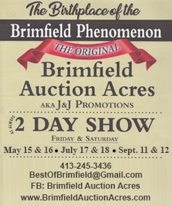 Brimfield Auction Acres - 2019