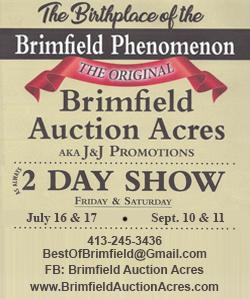 Brimfield Auction Acres - 2021